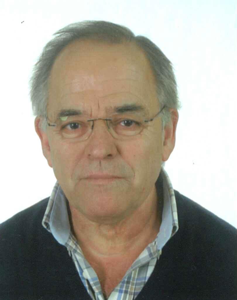 Domingos António Cancelas Fortes